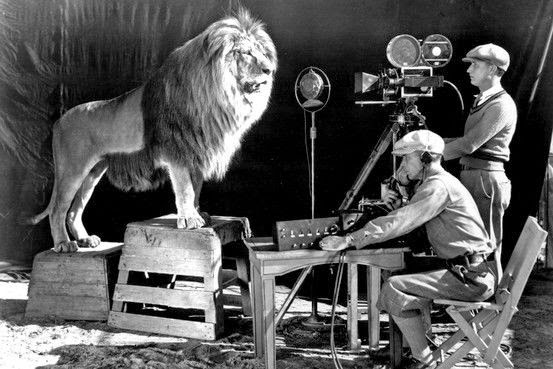 mgm-logo-shooting-mgm-lion-leo-2